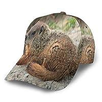 マルモタ 帽子 人気 キャップ 湾曲したエッジ 野球帽 日焼け止め ピークキャップ ハンチング帽 おしゃれ アウトドア スポーツ ソフトボールキャップ 調整可能 男女兼用
