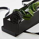 Véritable rose à tige longue durée dans une boîte cadeau doublée de soie, noir, 35-40cm