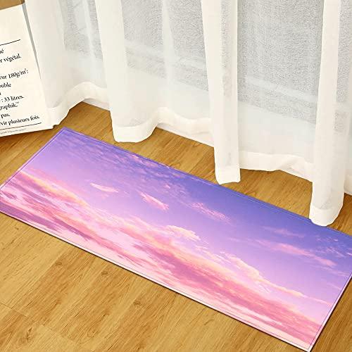 OPLJ Felpudo de Entrada con impresión de Paisaje 3D, Alfombra Absorbente para Cocina y baño, Felpudo para Sala de Estar y Dormitorio A10...