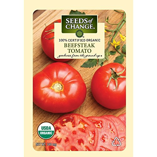 snow white tomato seeds - 9