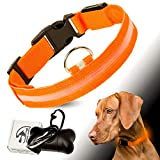 PETJET © Hundehalsband LED und EXTRA Beutelspender mit 15 Beuteln, Unisize S-L 20-55 cm, Orange Leuchthalsband und Hundetütenspender für Hunde & Katzen, groβe und kleine