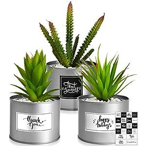 Silk Flower Arrangements Kitzini Artificial Succulents Boho Decor – 3 Faux Succulents Plants Artificial Silver Desk Accessories – Fake Succulent Boho Room Decor – Fake Succulents Office Decor for Women Desk Decor for Women