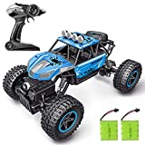 RC Car, SHARKOOL 2019 Newest 2.4Ghz 4WD 1/16 Scale RC Trucks Rc Crawlers Remote Control Car with Two...