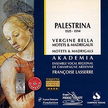 Palestrina : Vergine bella, Motets & madrigaux