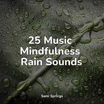 25 Music Mindfulness Rain Sounds