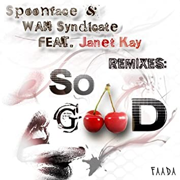 So Good (The Remixes) [feat. Janet Kay]