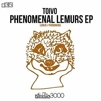 Phenomenal Lemurs (Original Mix)