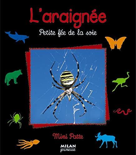 L'araignée : Petite fée de la soie (Mini-Patte)