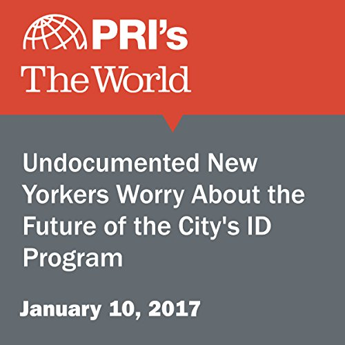 Undocumented New Yorkers Worry About the Future of the City's ID Program audiobook cover art