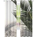 YUAZHOQI Cortina opaca de sombra de palma en pared blanca Mallorca Islas Baleares España 132 x 241 cm Cortinas para dormitorio
