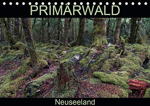 Primärwald - Neuseeland (Tischkalender 2021 DIN A5 quer)