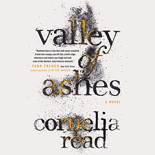 Valley of Ashes cover art