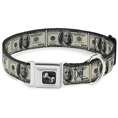 Buckle-Down Seatbelt Buckle Dog Collar - 100 Dollar Bills - 1