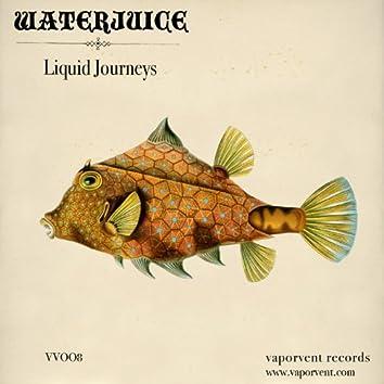 Liquid Journeys