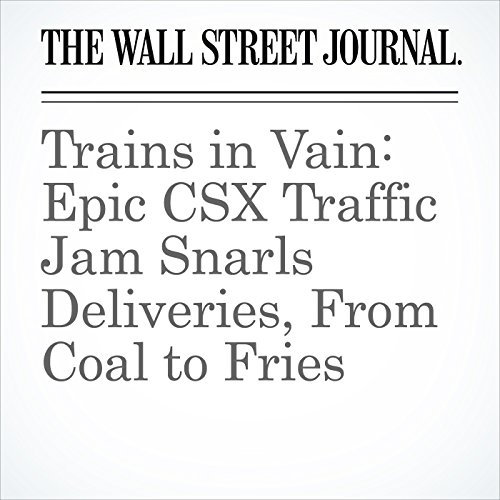 Trains in Vain: Epic CSX Traffic Jam Snarls Deliveries, From Coal to Fries copertina