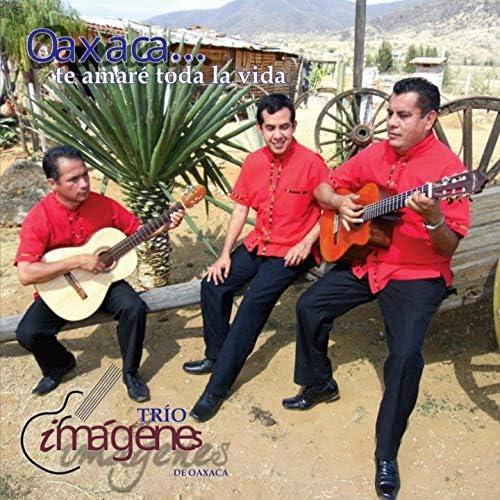 Trio Imágenes de Oaxaca