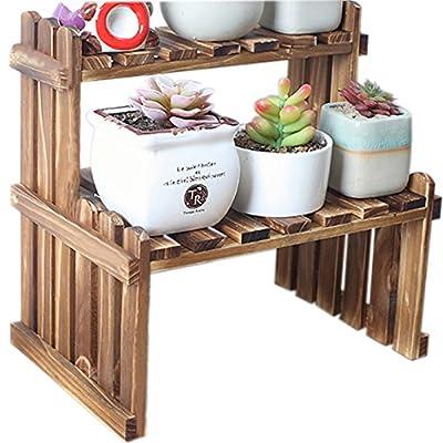WINGOFFLY 2 Tier Tabletop Wooden Plant Stand Decorative Planter Holder Desktop Flower Pot Shelf Rack for Office Home