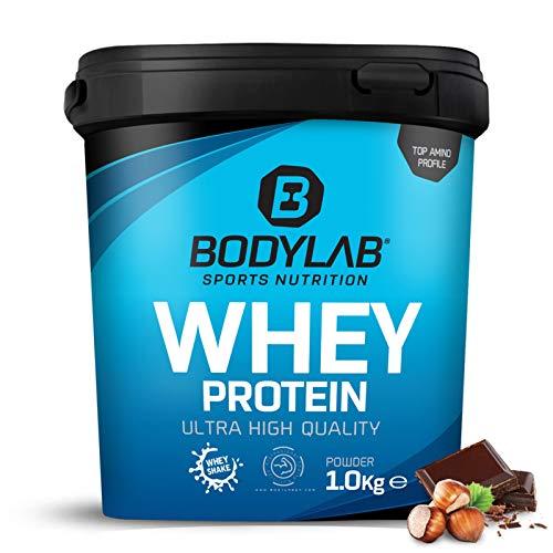 Protein-Pulver Bodylab24 Whey Protein Haselnuss-Schokolade 1kg / Protein-Shake für Kraftsport & Fitness / Whey-Pulver kann den Muskelaufbau unterstützen / Eiweiss-Pulver mit 80{5b097bf4842190ac85d66458a9c638a74c258f607f8cf15a516eff29c51da36f} Eiweiß / Aspartamfrei
