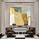 YAOSHIBIAN Porch Interior Painting, Gold-Tone Aluminum Frame, High-Permeability Plexiglass, High-Definition Core, Abstract Flat Pattern Hanging Painting, (Size : 3232cm)