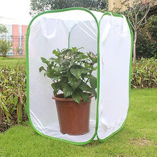 Jarchii Praktischer hilfreicher belüfteter Faltbarer Insektenkäfig mit großem Raum, belüfteter Insektenkäfig, Pflanzengarten für Hausinsekten