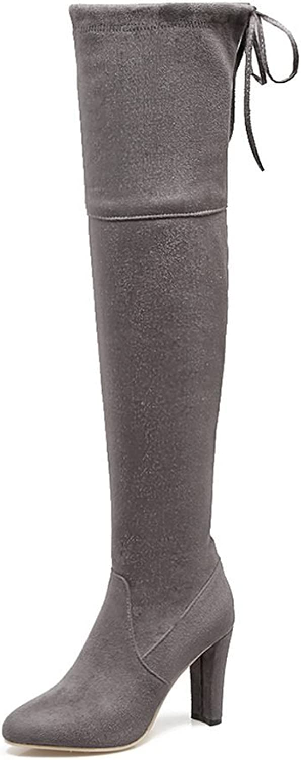 DecoStain Women's Faux Suede Thick High Heel Knee High Boots