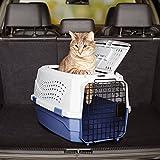 AmazonBasics Transportbox für Haustiere, 2 Türen, 1 Dachöffnung, 58cm - 12