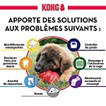 Kong #3