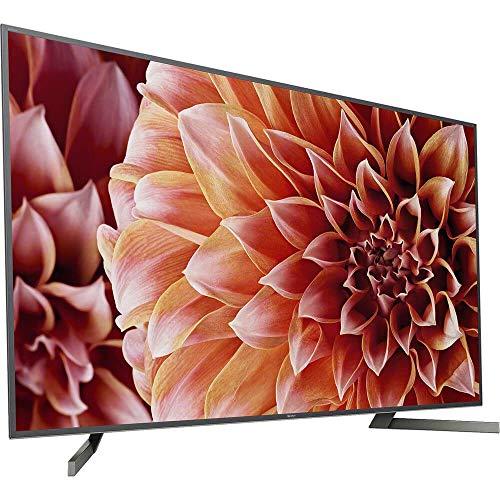 "Téléviseur Sony 65"" LED 2018 XBR65X900F/A - 1"