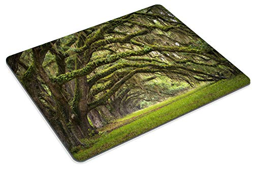 Smooffly Gaming Mouse Pad Custom,Oaks Avenue Charleston SC Plantation Live Oak Trees Forest Landscape Mousepad Non-Slip Rubber Rectangle Mouse Pads for Computers Laptop Photo #5