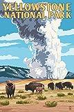 Yellowstone National Park–Old Faithful Geysir und