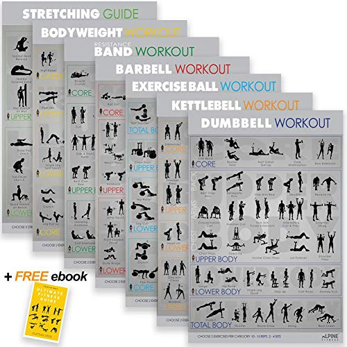 Workout Posters for Home Gym - Gym Poster Bundle Includes 7 Exercise Posters: 6 Workout Charts and 1 Stretching Poster Guide. Large Fitness Posters are 16.5 x 28' and Made in USA. Dry-Erase Laminate..