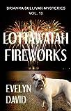Lottawatah Fireworks by Evelyn David, Brianna Sullivan mystery