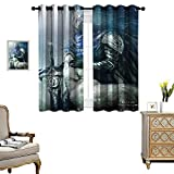 DRAGON VINES Noise Reducing Curtain Dark Souls Artorias Great Sword Wolf SIF for Home Decoration Set of 2 Panels W72 x L84