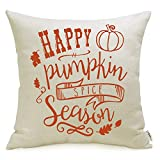 Meekio Fall Decorations for Home Fall Pillow Covers 18 x 18 Happy Pumkin Spice Season Cushion Covers for Fall Decor Thanksgiving Gifts