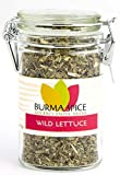 Wild Lettuce Leaf | Dried Leaves | Ideal for Tea Infusions | Natural Opioid Pain Killer 1 oz.