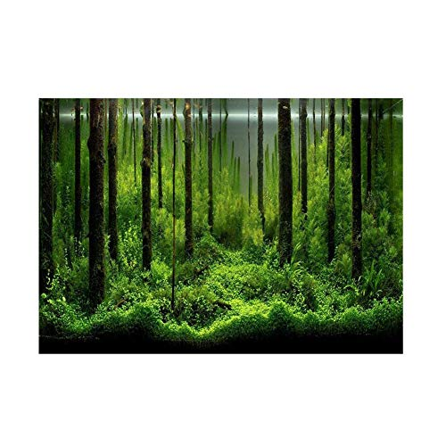 Haofy Etiqueta Engomada del Fondo del Acuario, Fish Tank Backdrop PVC Adhesive Underwater Forest Tank Background Poster Backdrop Decoración Papel(61 * 41cm)
