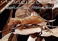 Reptilien auf Madagaskar (Tischkalender 2022 DIN A5 quer): Geckos, Chamaeleons, Schlangen, Echsen auf Madagaskar (Monatskalender, 14 Seiten )