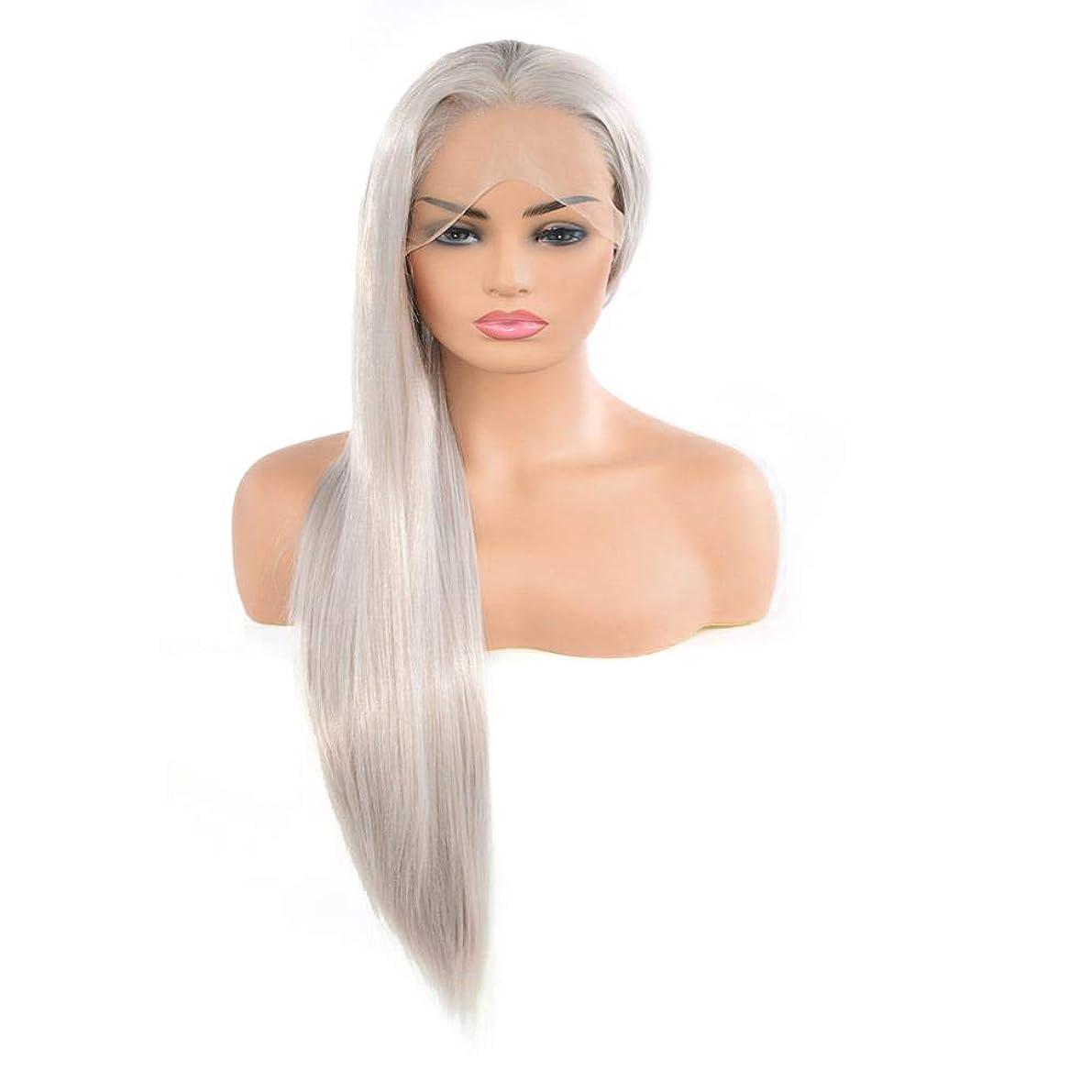 勤勉な隣接予約Yrattary 女性用シルバーグレーロングストレートヘアレースウィッグ耐熱繊維複合ヘアレースウィッグロールプレイングウィッグ (色 : Silver gray)