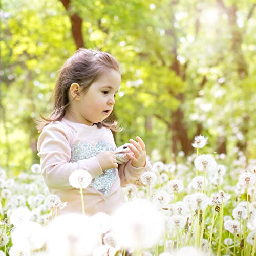 Children's Lullaby, Lullaby Sleeping Baby Happy Child for Our Eq Eq Development Shake Preacher Functional Piano Lullaby 16-In the flower field (lullaby song)