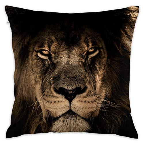 TERPASTRY Taie d'oreiller carrée décorative en Coton Doux pour extérieur, pour canapé, Chambre à Coucher, Bureau, Voiture One Size African Lion Mane Close Eyes
