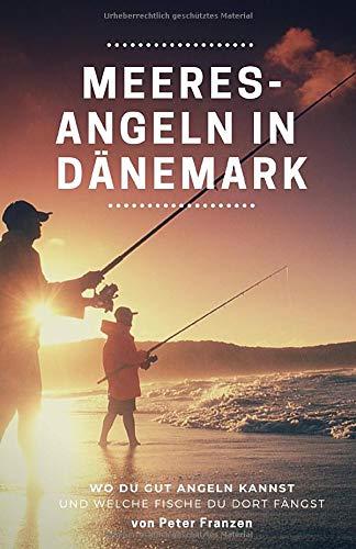 Meeresangeln in Dänemark: Wo Du gut angeln kannst und welche Fische Du dort fängst