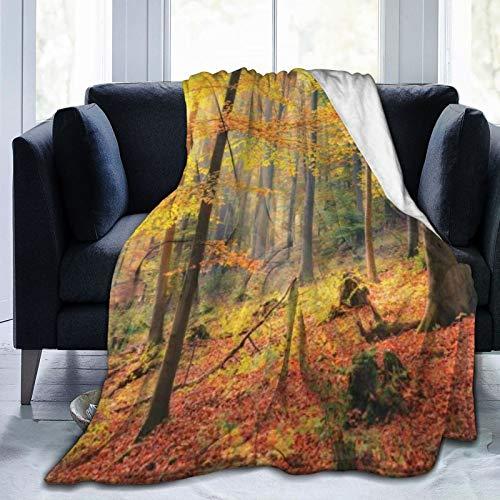 KOSALAER Bedding Manta,Colorido Bosque Otoño con Rayos Sol con Hojas Doradas Árboles Temporada,Mantas cálidas de Sala de Estar/Dormitorio Ultra Suaves para Todas Las Estaciones
