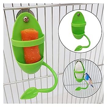 RAMPS Alimentateur Perroquet avec Rack Debout Porte-légumes à Fruits Plastic Plastic Plasse PLASTIER des Accessoires Cage DE Cage des OISEURS Pet