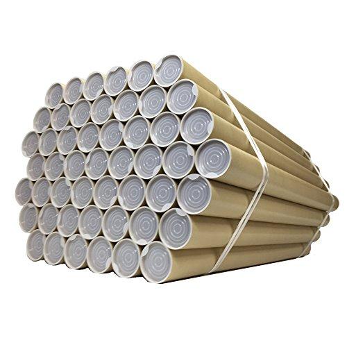 紙筒 丸筒 紙管 ポスター 筒 両端キャップ付 径51mm 肉厚1.0mm (【A2用】径51mm×長さ450mm 肉厚1.0mm)