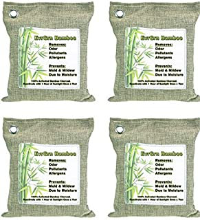 EvrGrn Large 200g Bags - Activated Bamboo Charcoal All Natural Air Freshener | Eco Friendly Odor Eliminator and Moisture Absorber | Car Deodorizer - Closet and Room Air Purifier