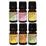 Rocky Mountain Oils The Essentials Kit - Includes 100% Pure Lavender, Lemon, Orange, Peppermint, Tea Tree, and Rosemary Essential Oil - Topical, and Cleaning - 5ml
