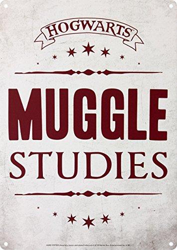 Harry Potter Dekorationsschild Tin, Mehrfarbig, 15 x 21