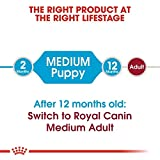 Royal Canin 35217 Medium Junior 15 kg – Hundefutter - 4