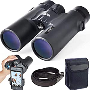 Binoculars for Astronomy - We Rate Five of the Best Options