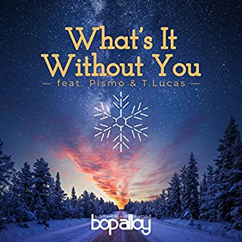 What's It Without You (feat. Pismo & T.Lucas)